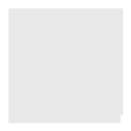 Пензель радіаторний MTX 2,5 83849