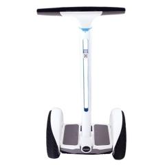 Купить Гироскутер Ninebot by Segway White 22.02.0010.20