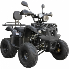 Купить Квадроцикл Spark SP125-5