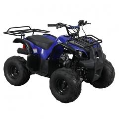 Купить Квадроцикл Spark SP110-3