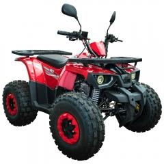 Купить Квадроцикл Spark SP125-6